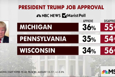 Trump scores low approval in key states: poll