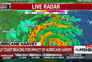 TX Rep. Farenthold: Effects of Harvey will...