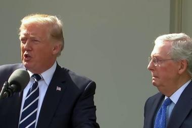 Fmr. Trump Aide: Trump Needs Steve Bannon