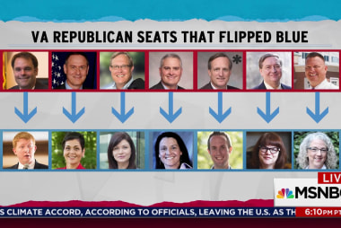 Democratic wave brings new faces to politics