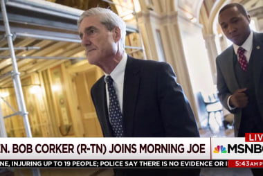 Senator predicts uprising if Trump fires Mueller