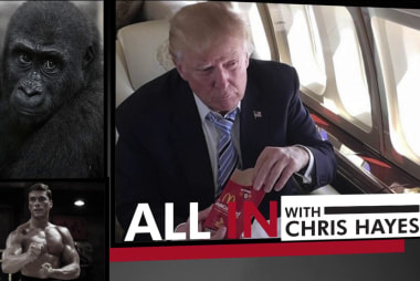 "Why that fake ""Gorilla Channel"" Trump story rings true"