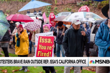 Protesters throw retirement party for Issa