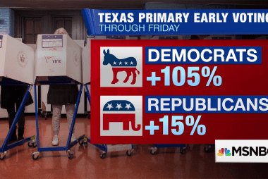 Dems see record early voting numbers in Texas Primary