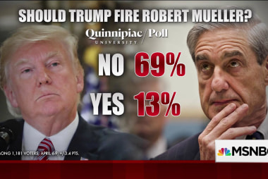 Most Americans think Mueller should stay in job: poll