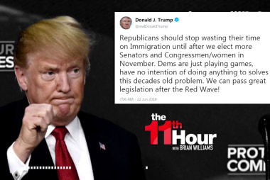 Trump: GOP can fix immigration after 'Red Wave' in fall elections