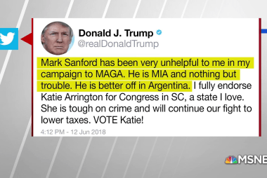 Trump tweets support for Mark Sanford's opponent