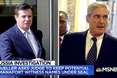 Mueller asked for immunity for 5 witnesses in Paul Manafort case
