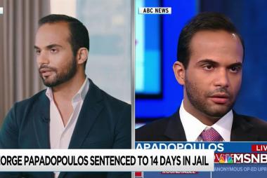 Papadopoulos calls Trump Russia investigation start into question