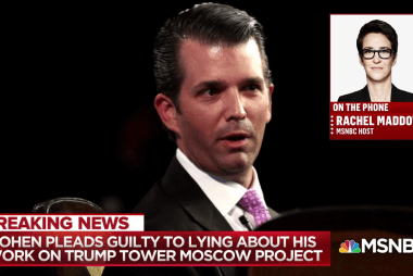 Cohen plea increases legal exposure of Trump's immediate family