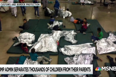 Internal report exposes extent of Trump child separation policy