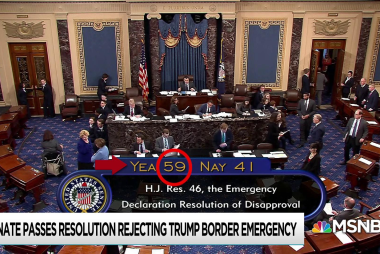 Congress takes historic action blocking Trump on emergency call
