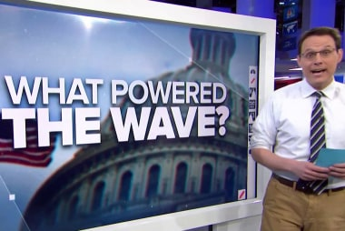 What 2018 midterm election voters could mean for 2020