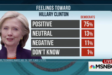 Poll shows Clinton holds majority Dem support