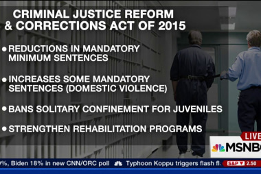 Senate takes up criminal justice reform
