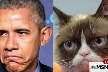 Obama compares Republicans to 'Grumpy Cat'