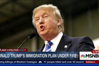 Donald Trump's immigration plan under fire