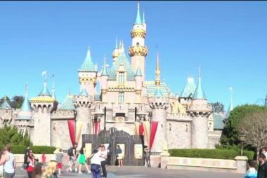 Metal detectors installed at Disney parks