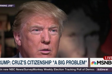 Trump questions Ted Cruz's citizenship
