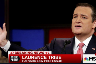 Tribe: Cruz a 'constitutional opportunist'