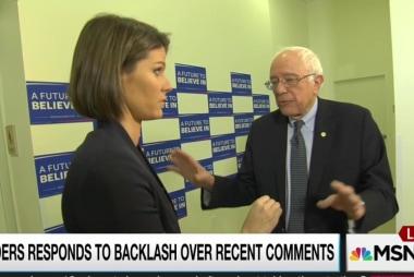 Sanders clarifies 'establishment' remarks
