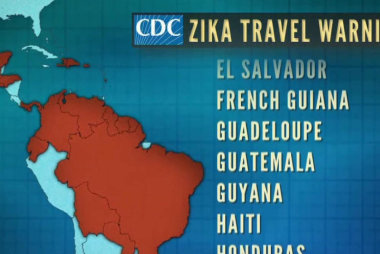 Zika virus carries big economic impact