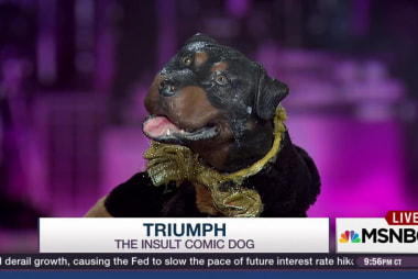 'Triumph' reacts to New Hampshire results