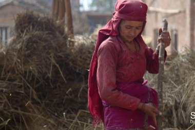 Nepal's farmers prepare for monsoons after...