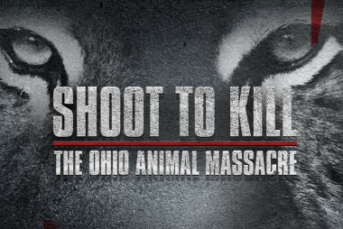 Maximum Drama: Shoot to Kill: The Ohio...