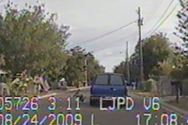 Caught on Camera: Dash Cam Diaries 6