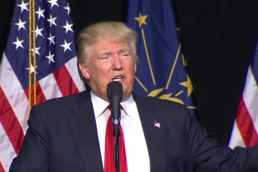 Trump on waterboarding: 'I love it'