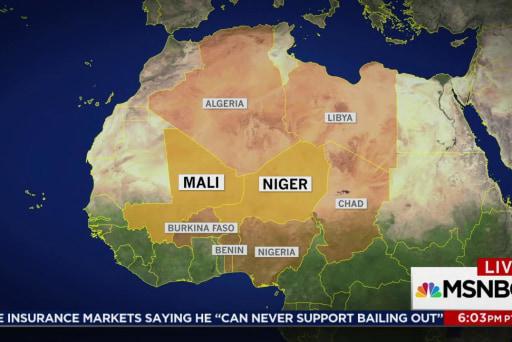 Trump travel ban preceded US Niger exposure