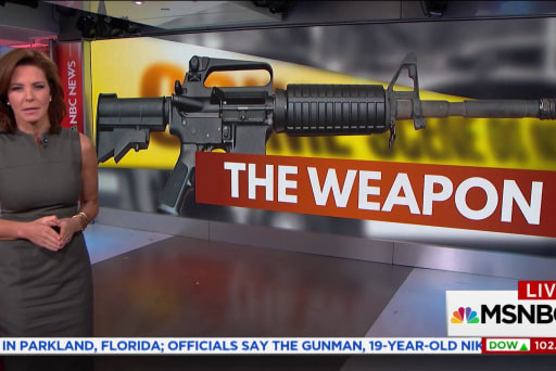 The AR-15 rifle and America's mass shootings