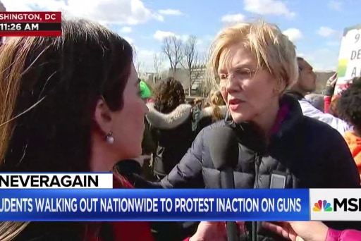 Sen. Warren: These young people will 'spring us free' from the NRA