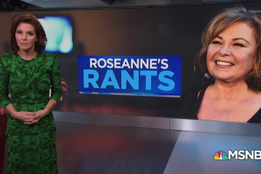 Roseanne Barr's controversial past comments and tweets