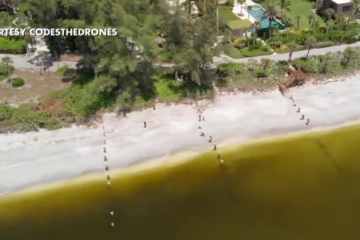 Florida's red tide a major election issue