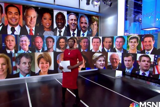 Joy's guests give top picks for 2020 Democratic presidential, VP nominations