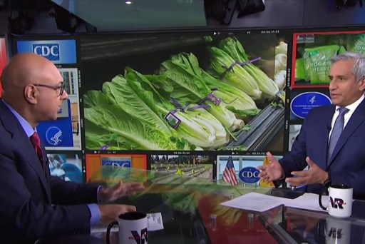 Why you must avoid romaine lettuce