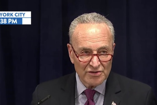Schumer: 'There is no reason on god's green earth' why Mueller report should not be public