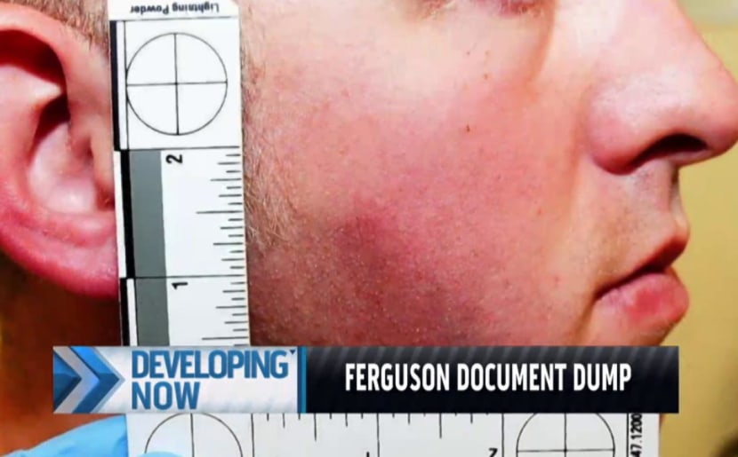 What the Ferguson evidence dump reveals