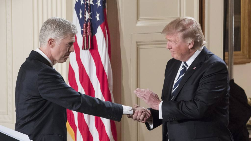 Trump Supreme Court pick sides with liberals in immigration ruling against administration