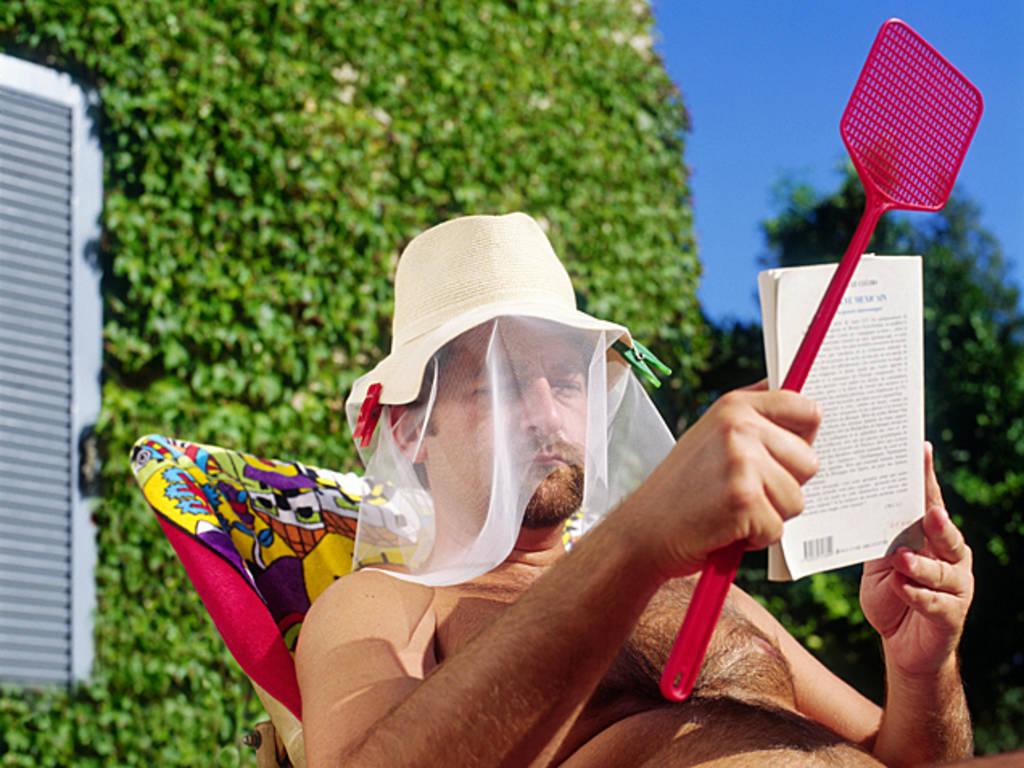 лето комары насекомые