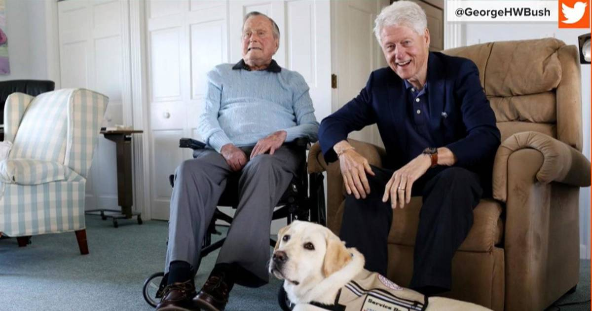 Former President George H.W. Bush gets his own service dog named Sully