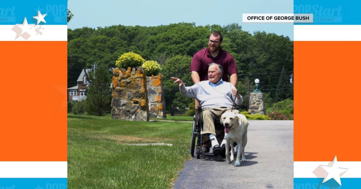 George H.W. Bush's service dog does a social media takeover