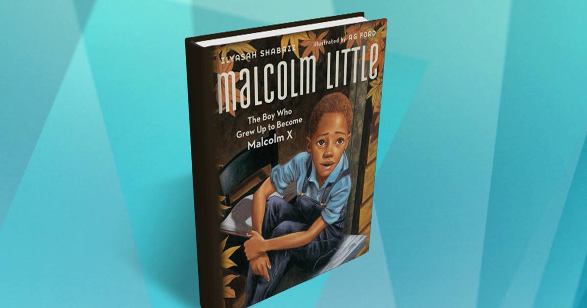 the life and struggles of malcolm little The goal was to integrate black people into those parts of american life from and the rebirth of malcolm little as malcolm x personalised the struggle of.