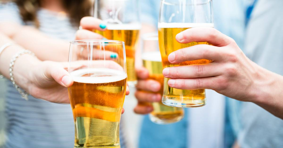 Is Drinking Beer in Moderation Good for Your Health