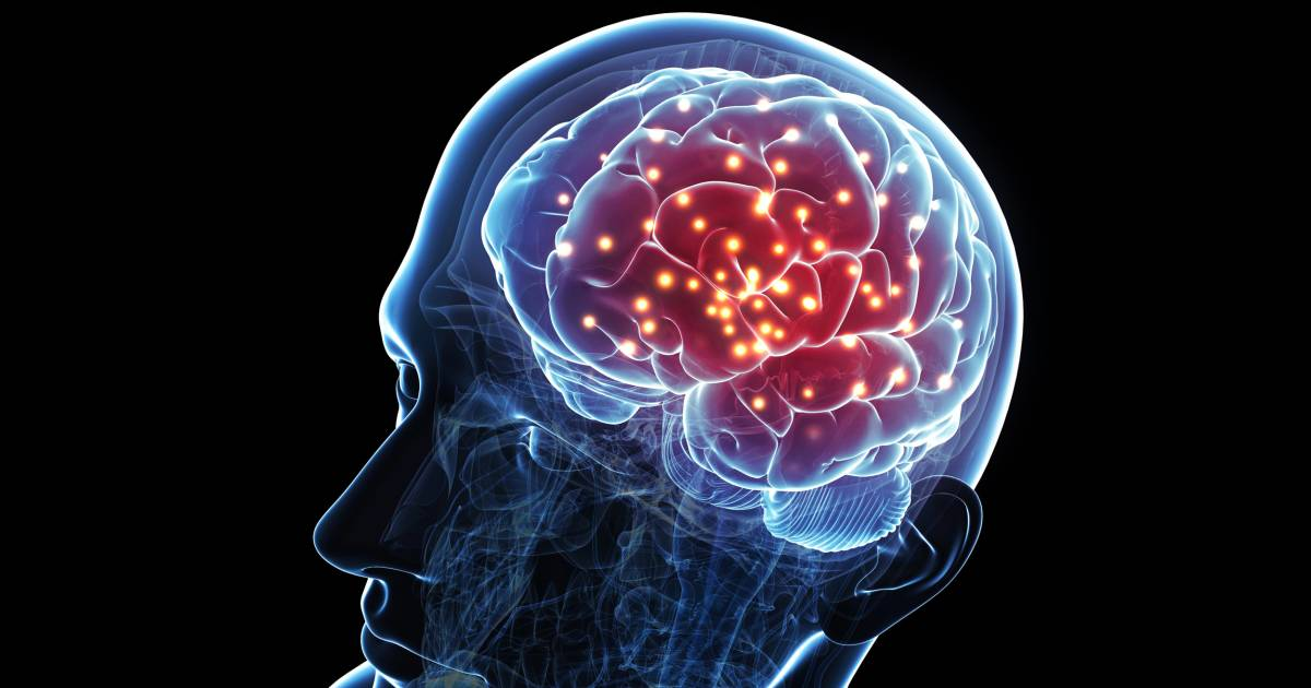 Brain Implant Boosts Memory For First Time Ever