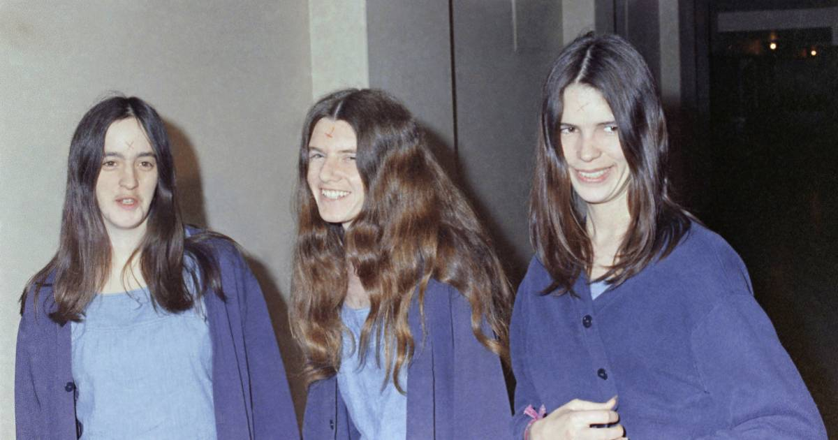 alexandra stein cults are terrifying but they re even