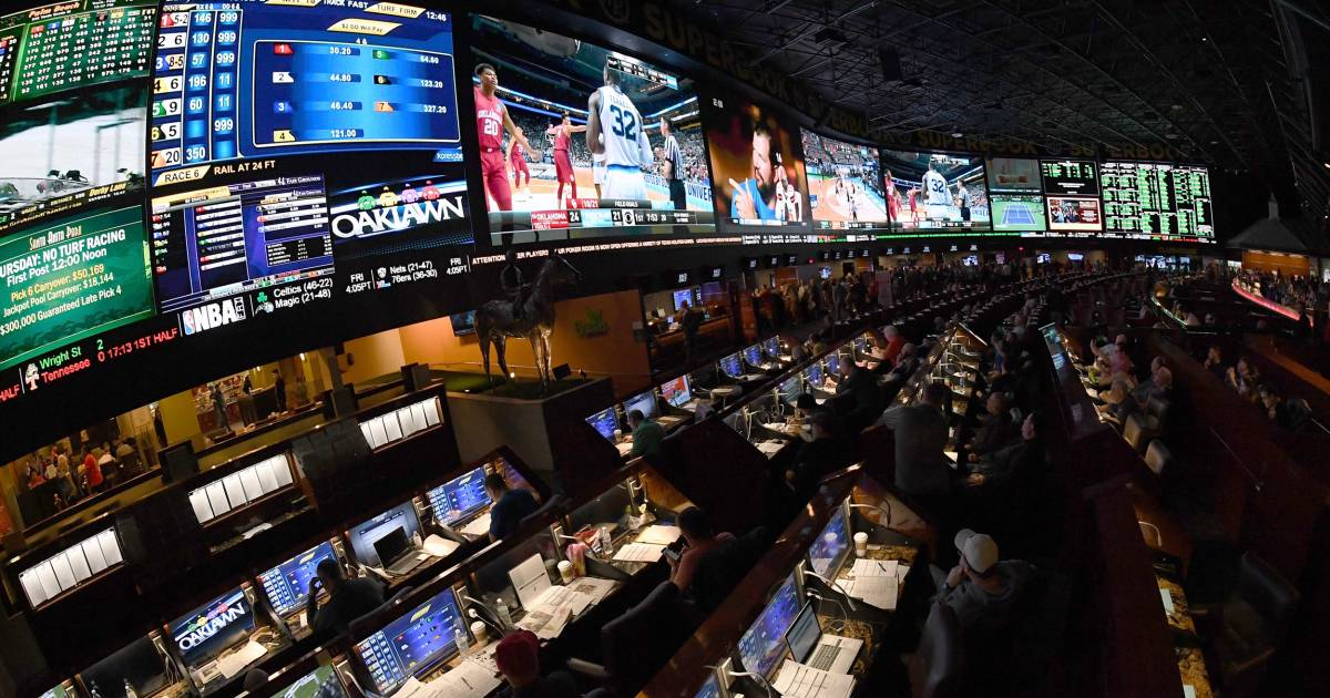 Sports Betting Casino Windsor