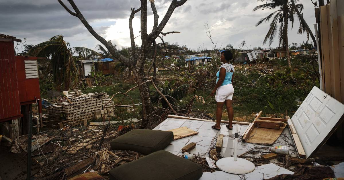 Tracing the origins of the Puerto Rico disaster with Naomi Klein: podcast & transcript